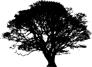 1197089211475574592Chrisdesign_Tree_silhouettes_5_svg_med